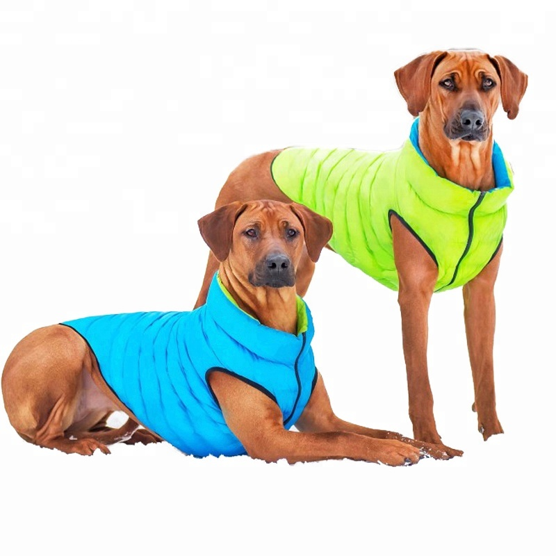 high visibility vest for <strong>dog</strong>