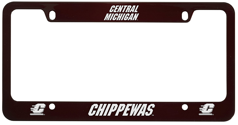 Cheap Michigan License Plate Lookup, find Michigan License Plate ...
