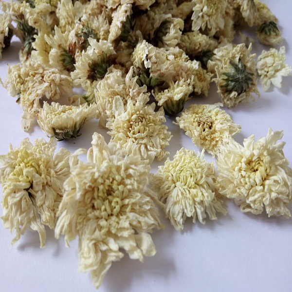 Organic white chrysanthemum tea Chinese flower tea brands