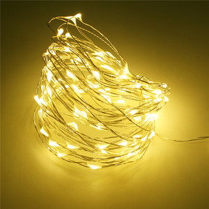LED String Lights Warm White Copper Wire Fair Lights Remote Control Plug in