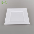 Direct factory rectangular used in restaurant white square wholesale dinner plates