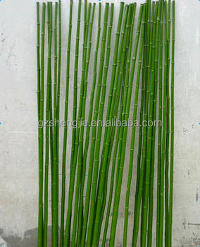 Bamboo Poles Green Color For Indoor Design Decoration Cane Stick