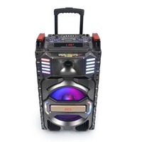 Rechargeable Portable Trolley Speaker box 12 inch big stage speaker from Jsun