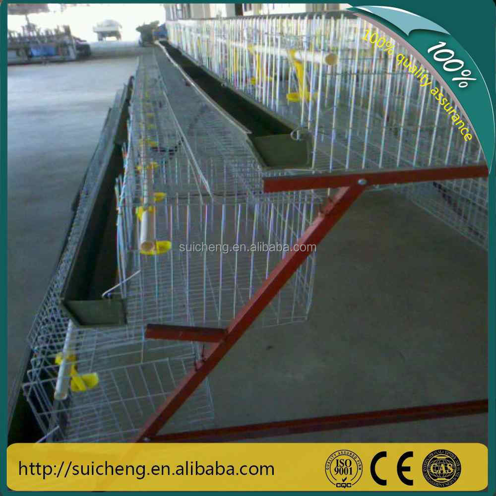 SERIES Poultry Chicken Cage For Feed Chicken