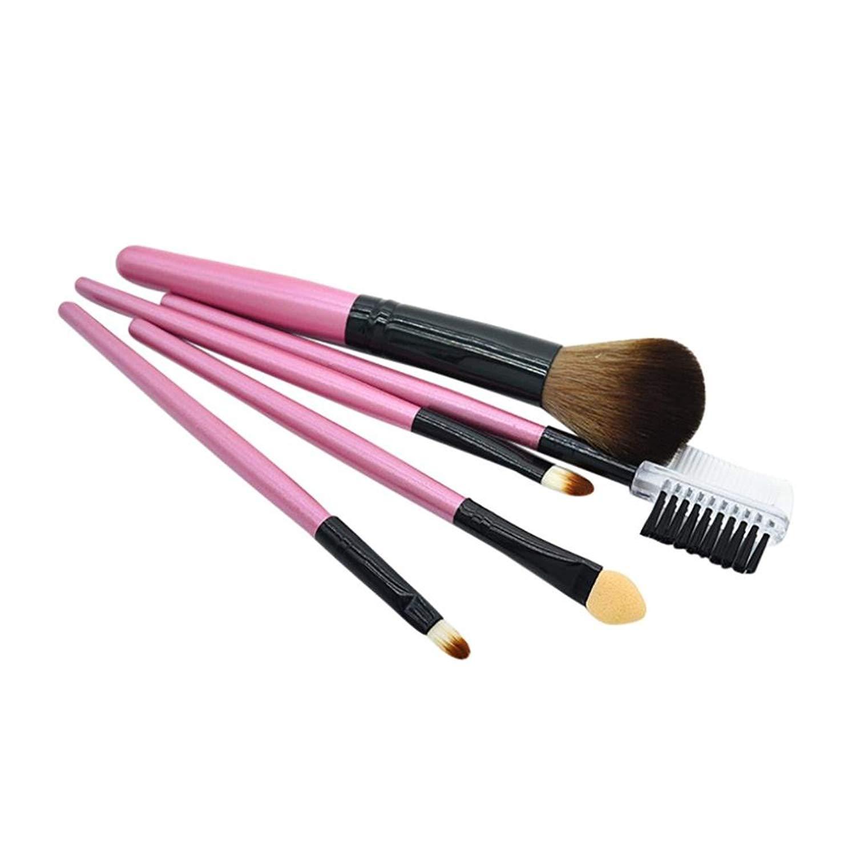 5 Pcs Makeup Brush Blending Brush Multifunction Cosmetics Tool