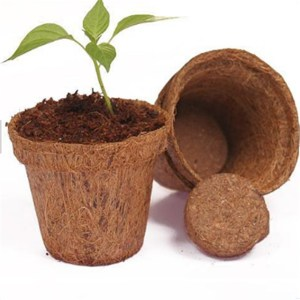 coco fiber flower basket shape pots/coir seedling cups