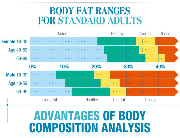 fat analyzer/quantum body analyzer/body analyzer machine