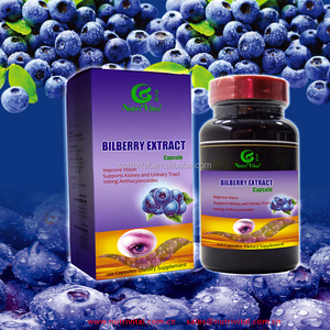 Bilberry extract capsule Dietary supplement Vision health supplement