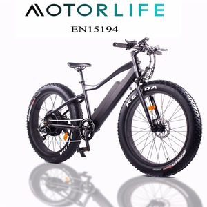 electric bikes 2017/2018 OEM service low MOQ alloy frame purple mountain bicycle snow e-bike fat tire fat bike full Suspension
