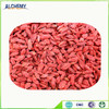 hot sell fresh bulk organic goji berry dried
