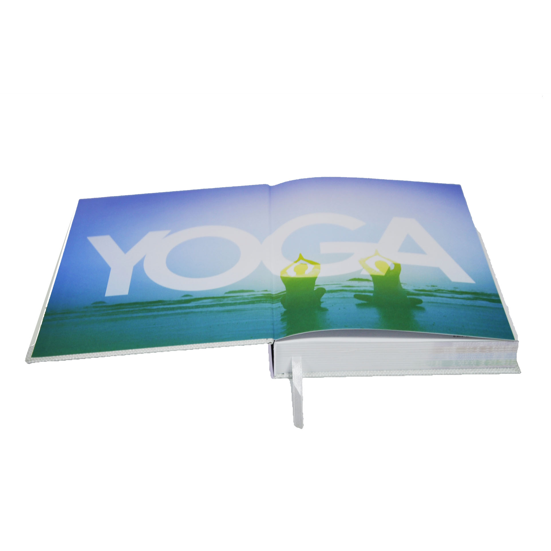Shenzhen Promotional Printing Full Color Comics Japoneses Para Adultos