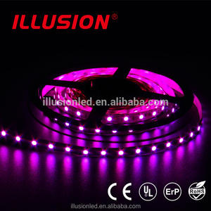 Factory price eco cheapest Christmas decorate led strip IP20 RGB SMD5050 DC12V led light strip 60leds/m led strip light with CE