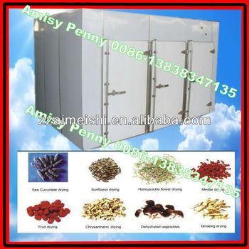 electric steam gas heating drying oven for fruit,vegetable,food,fish/ 0086-13838347135