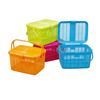/product-detail/animal-carry-plastic-picnic-basket-with-handle-and-lid-1863680401.html