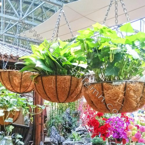 Metal Hanging Basket With Coconut Liner Chain Bracket Decorative Wire Flower Baskets Product On Alibaba