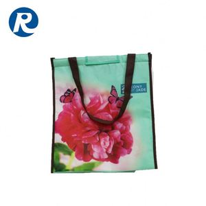 Ruiding China Products Latest College Little Girls Non Woven Shoulder Cooler Bags