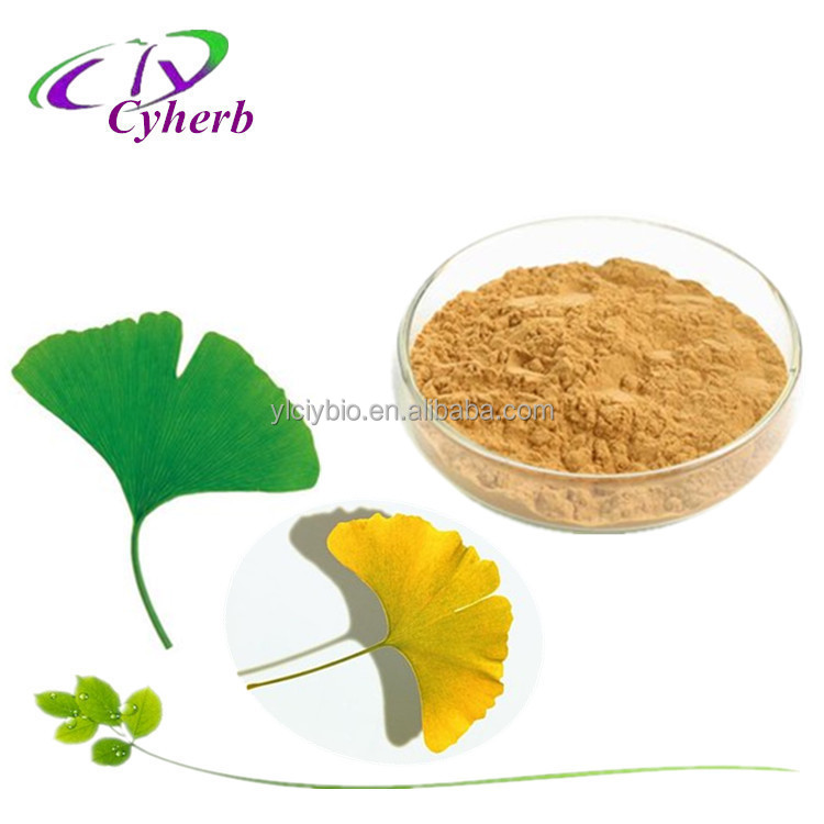 100% natural anti-oxidant ginkgo biloba leaves extract powder 24% Gingko Flavonoids/6% Total terpene