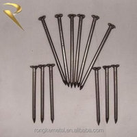 Common wire nails used for fix wood