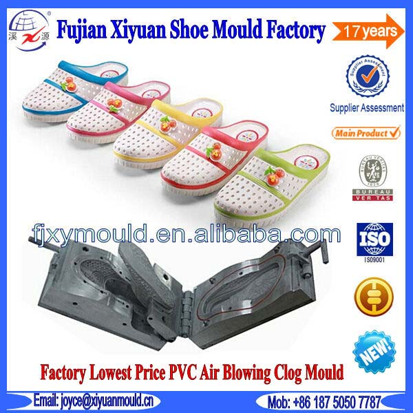 Professional Custom Lady PVC Air Blowing Shoes Mould Die
