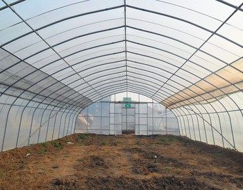 Agriculture Hydroponics Greenhouse Design with Plastic Film for Chili/Mushroom/Green Cucumber/Tomato