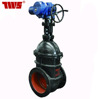 /product-detail/cast-iron-motorized-gate-valve-with-non-rising-stem-dn40-dn600-60563232794.html