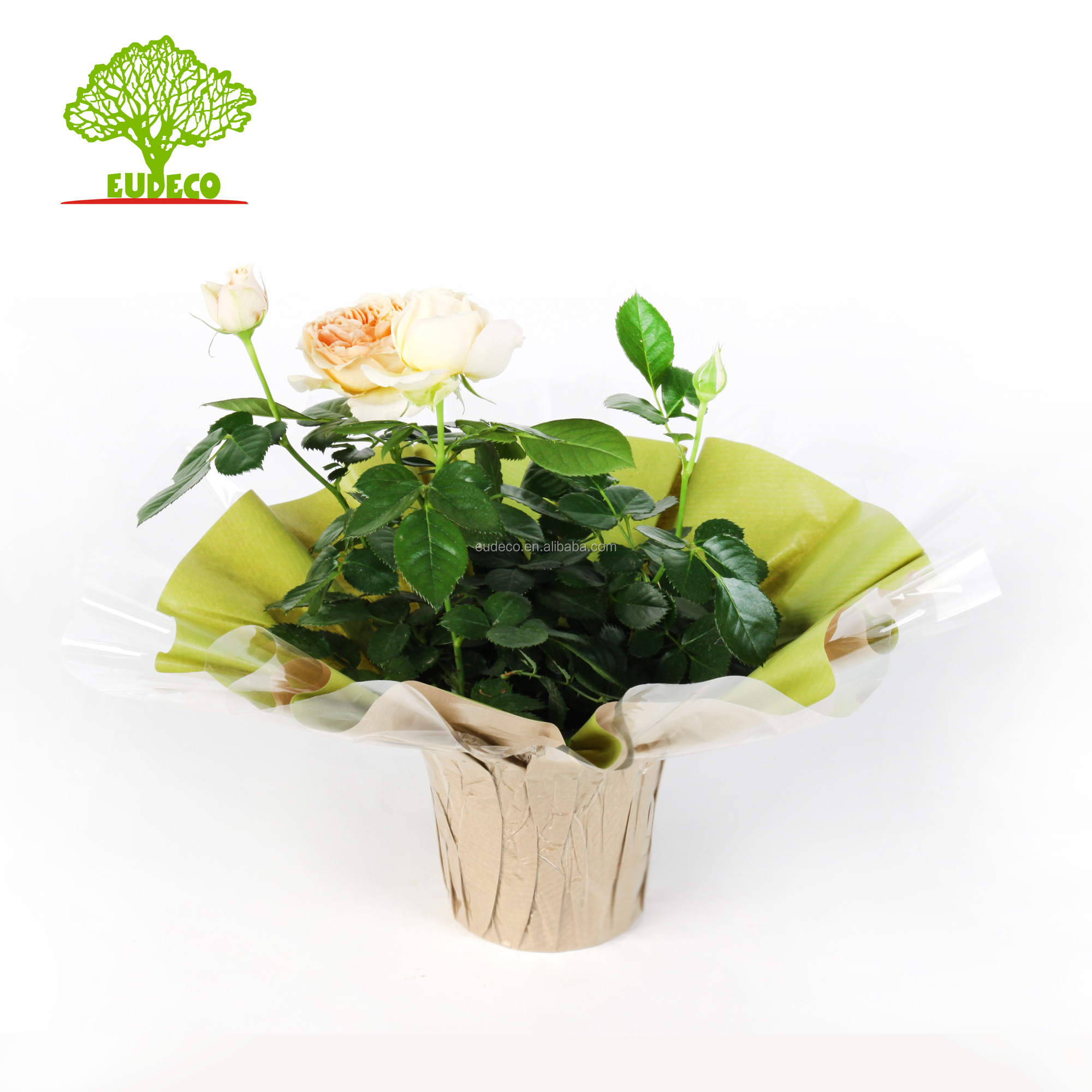 Bouquet Holder, Bouquet Holder Suppliers and Manufacturers at ...