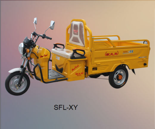 2017 most popular 48V 800w Electric cargo tricycle/auto rickshaw/electric tricycle for sale