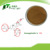Factory Supply Astragaloside IV 0.3%-99% Astragalus Root Extract Astragaloside IV Powder