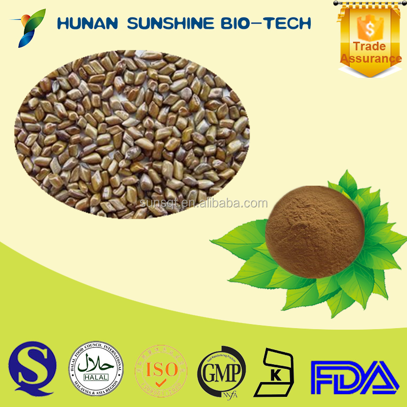 Best quality of Antibiosis Cassia seed P.E. powder 2.5% Total anthraquinones