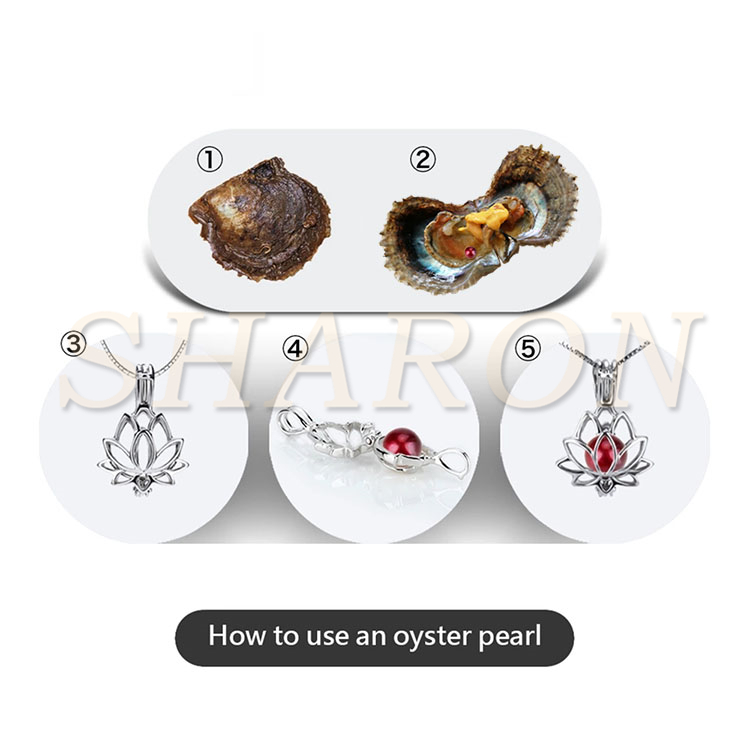 Amazing Gift AAA Children's Jewelry Vacuum-packed 6-7mm Akoya Oysters with Round Red Wine Natural Cultured Pearls