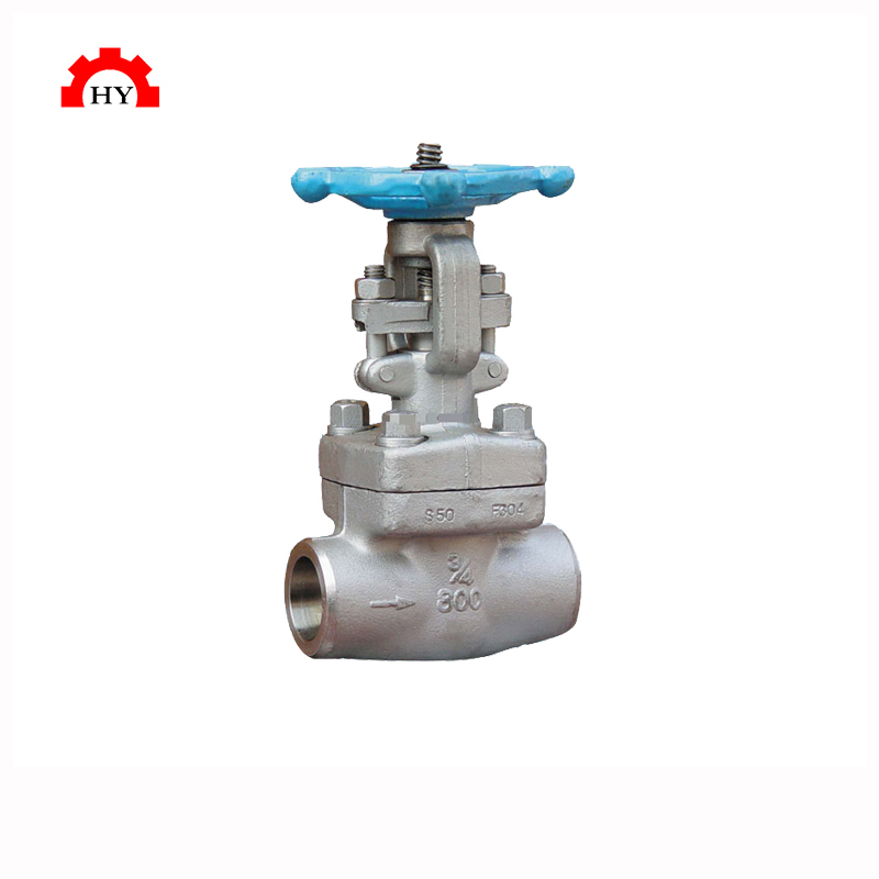 Carbon steel A105 1 inch class 800 galvanized socket weld bw end gate valve