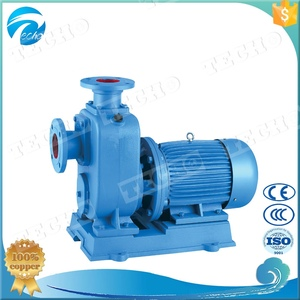 100BZ-45 Self Suction horizontal split case Centrifugal Pump