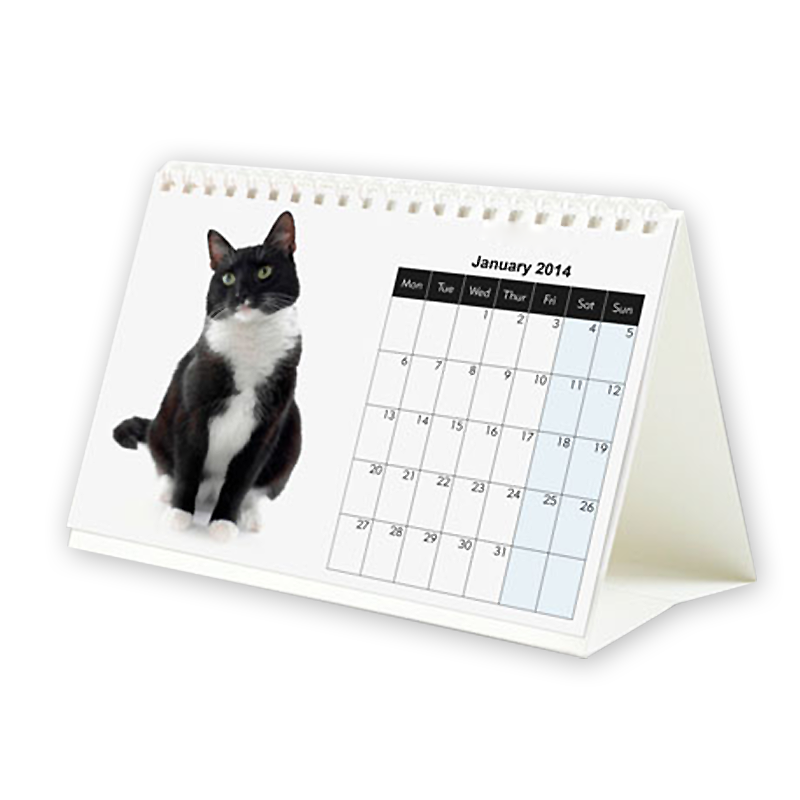 Customizable cute cat desk calendar
