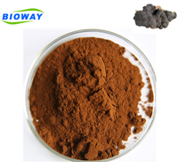 Pure Natural Ratio 4:1 Organic Chaga Mushroom Siberian Extract Powder