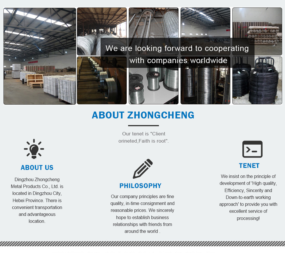 Dingzhou Zhongcheng Metal Products Co., Ltd. - Galvanized Wire,Black ...