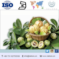 Top grade Natural Ly-Garcinia Cambogia Extract energy levels increasing manufacturer