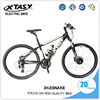 Innovative Design New Model E Mountain Bike Fashion E Bike