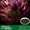 100% Natural plant Red Clover Extract Powder/Trifolium pratense