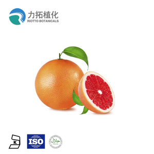 Manufacturer Supply Grapefruit Extract 20%-98%Naringin Powder Grapefruit Seed Extract Powder