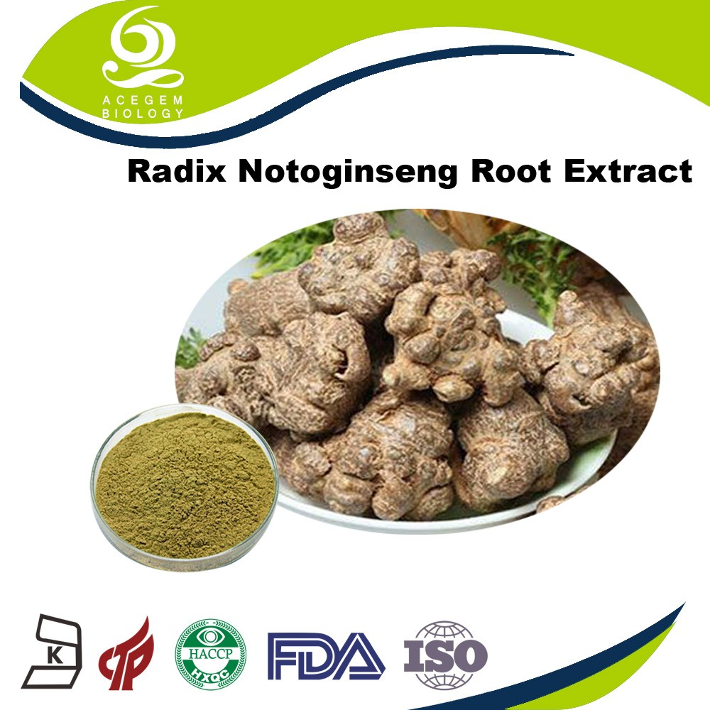 2016 Natural Herbal Extract Radix Notoginseng Root Extract Supplier Fine Powder