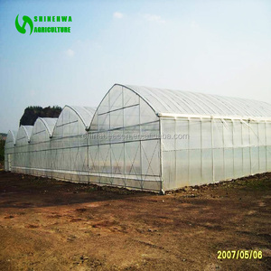 Hot Sale Tunnel/Single-span Plastic/film Greenhouse/Green House For Agriculture