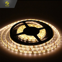 Warm White 5 Meter Waterproof LED Flexible Light Strip 3528 12 v 24 v