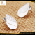 European leaf shaped shell stainless steel jewelry set for gifts