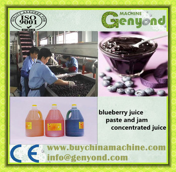 High Qualityt Fruit Jam Production Line In Shanghai