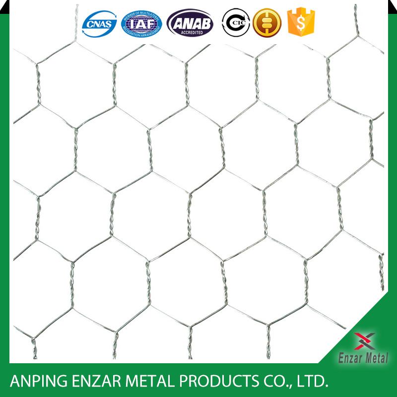 Funky Galvanized Wire Mesh Home Depot Frieze - Electrical and Wiring ...