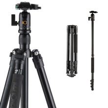 K & F Concept TM2524 Professionele <span class=keywords><strong>Aluminium</strong></span> Camera <span class=keywords><strong>Statief</strong></span> Monopod Met Balhoofd Voor DSLR Camera