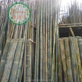 Postes De Bambú Al Por Mayorventa Al Por Mayor Natural Postes De Bambú Venta Con Gran Calidad Buy Postes De Bambú Baratospostes De Bambú