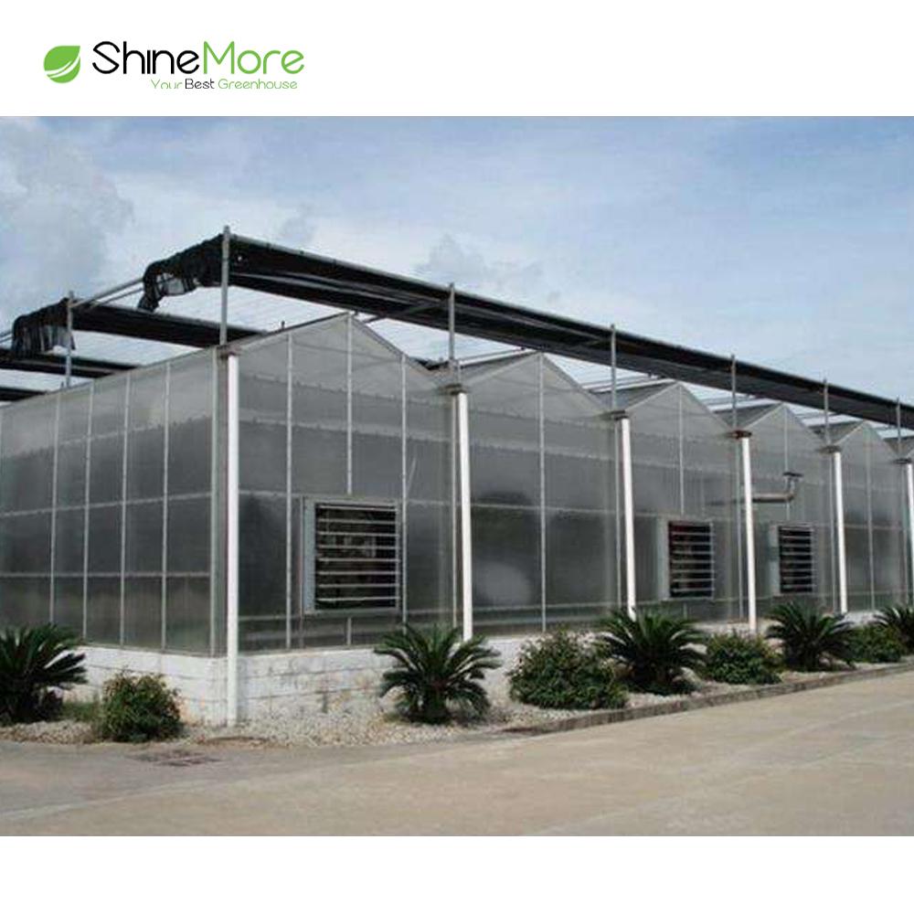 SHINEMORE Kunststoff-Gewächshaus-Tomatenanbau, kommerzielles PO-Filmgewächshaus zu verkaufen