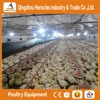 Heracles best sale poultry farming control shed equipment fo rchicken broiler farm