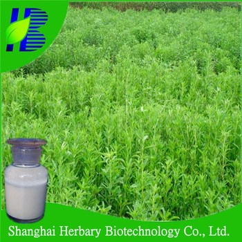 High quality stevia extract/100% natural sweetener/ pure stevia powder